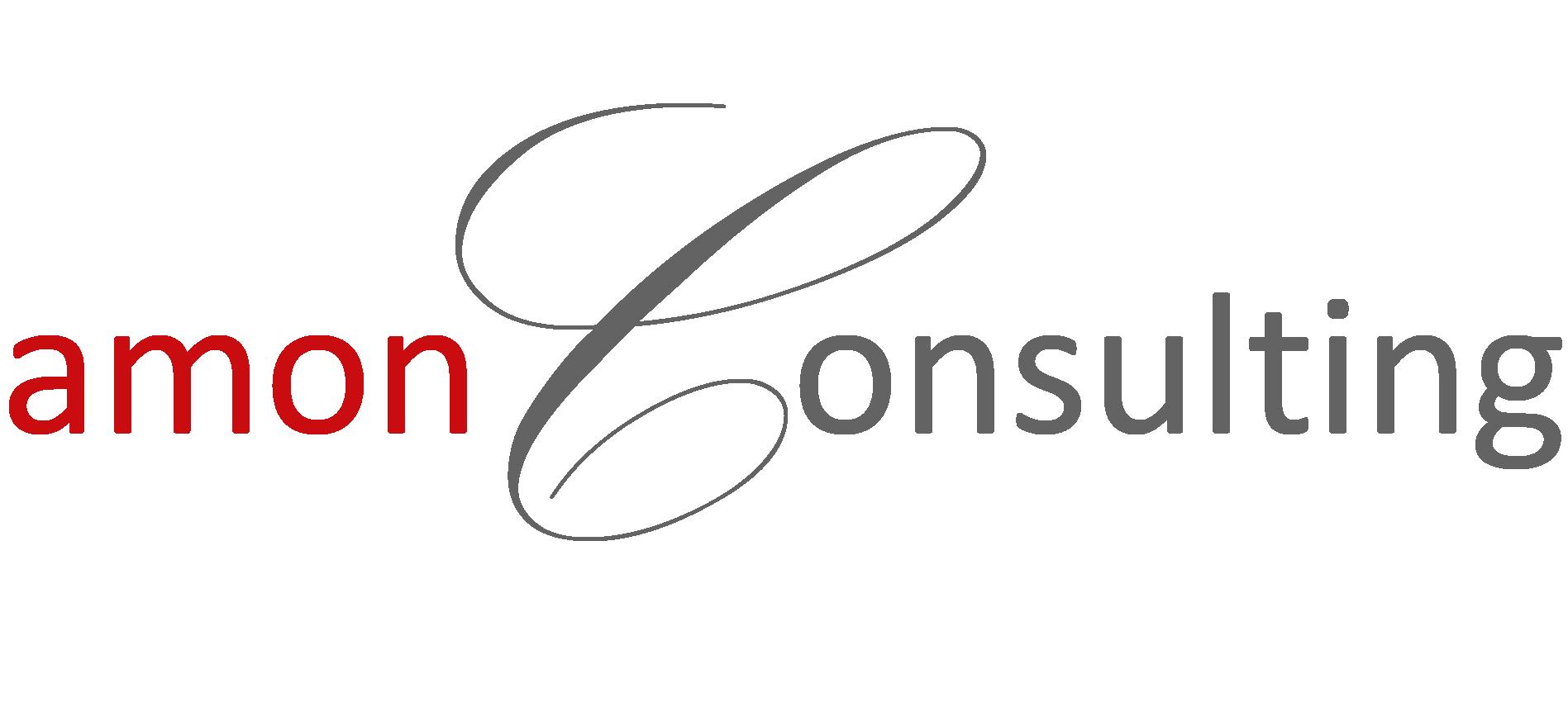 Amon Consulting Buchhaltung Und Personalverrechnung In Perg